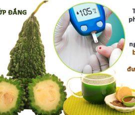 Bài thuốc chữa bệnh tiểu đường hiệu quả